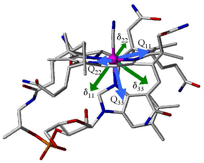 Side View of Cobalt Tensors in Vitamin B12