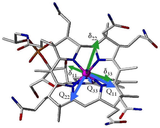 Top View of Cobalt Tensors in Vitamin B12